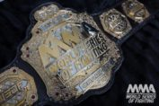 World Series of Fighting MMA belt